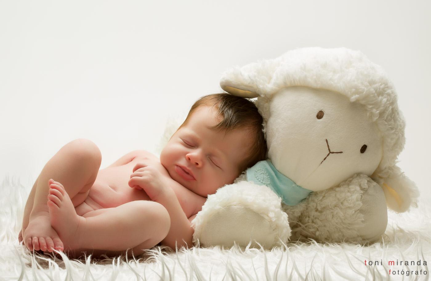 recién nacida con peluche oveja