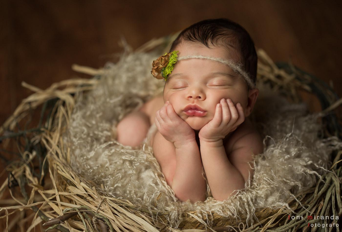 newborn dentro de nido de pájaro