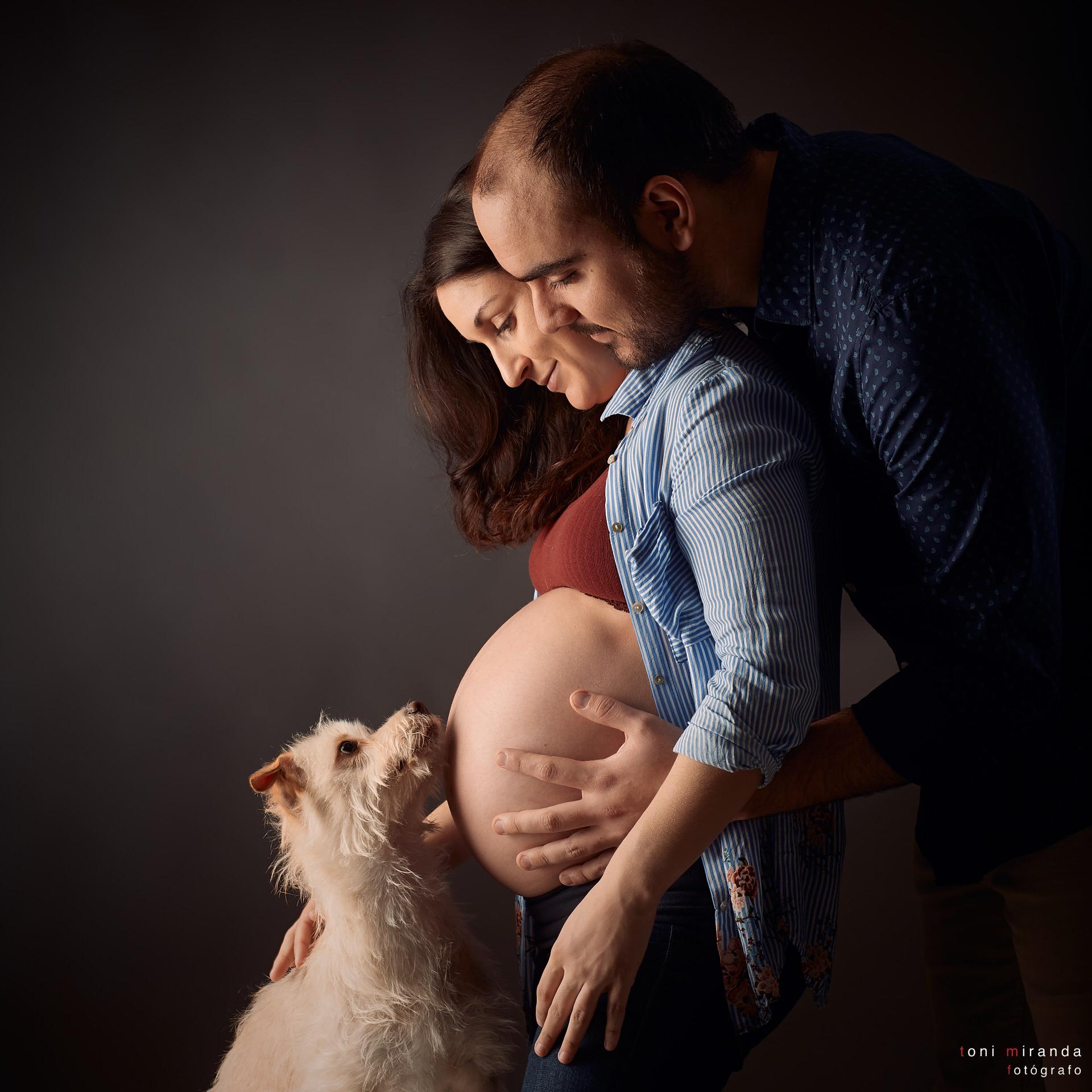 sesion de embarazo con perro en estudio alcoy