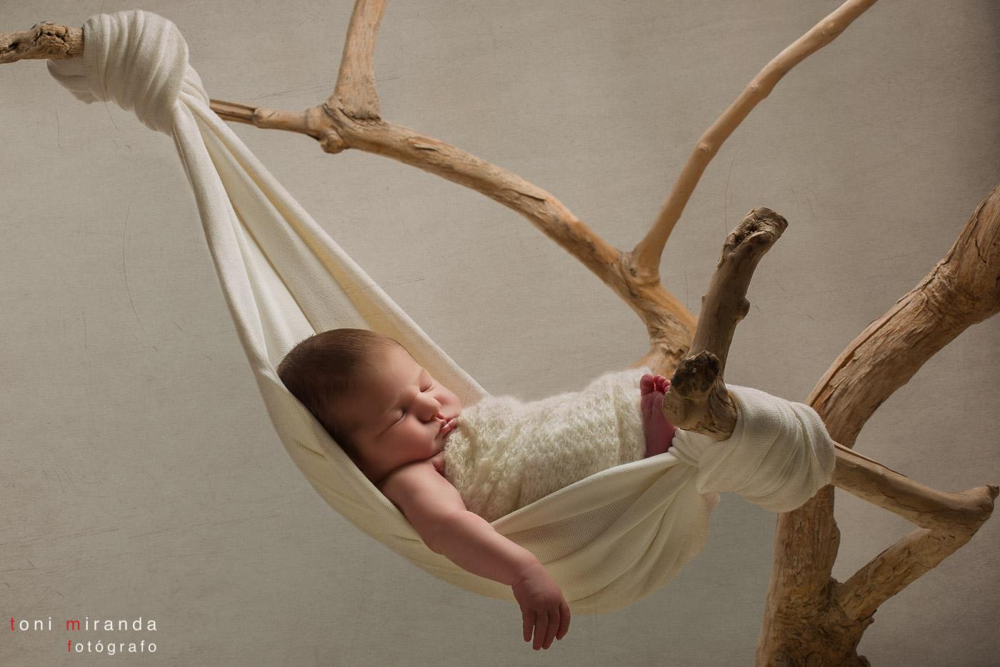 bebe recién nacida durmiendo en mercecedora colgando de un árbol